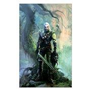 Хардпостер (на твёрдой основе) Witcher